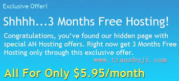 AN Hosting主机买一年送3个月